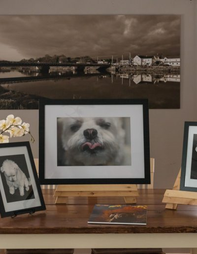 Custom framed artwork for clients, annapolis valley photographer, pet photographer